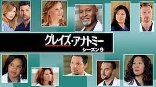グレイズ・アナトミー シーズン9