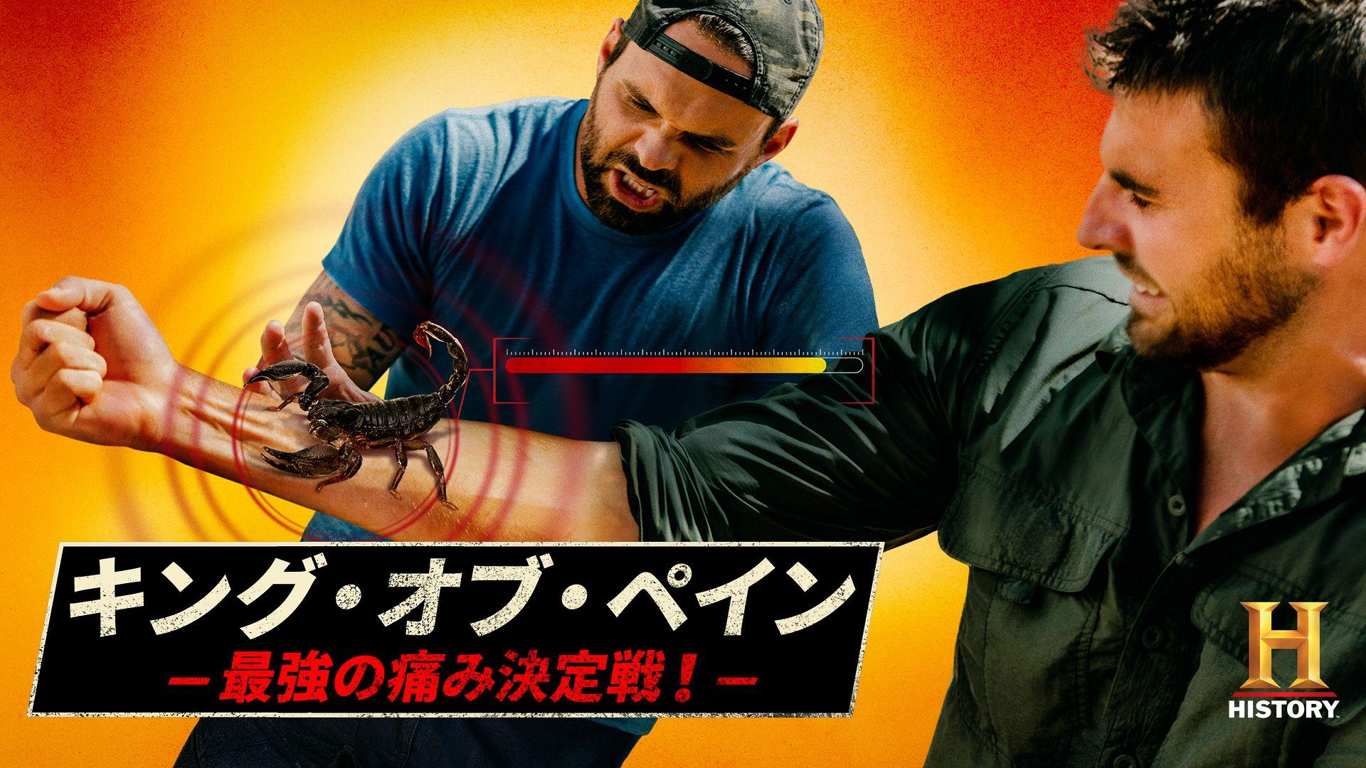 キング・オブ・ペイン -最強の痛み決定戦!-