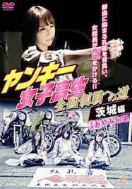 ヤンキー女子高生 全国制覇への道4 茨城編