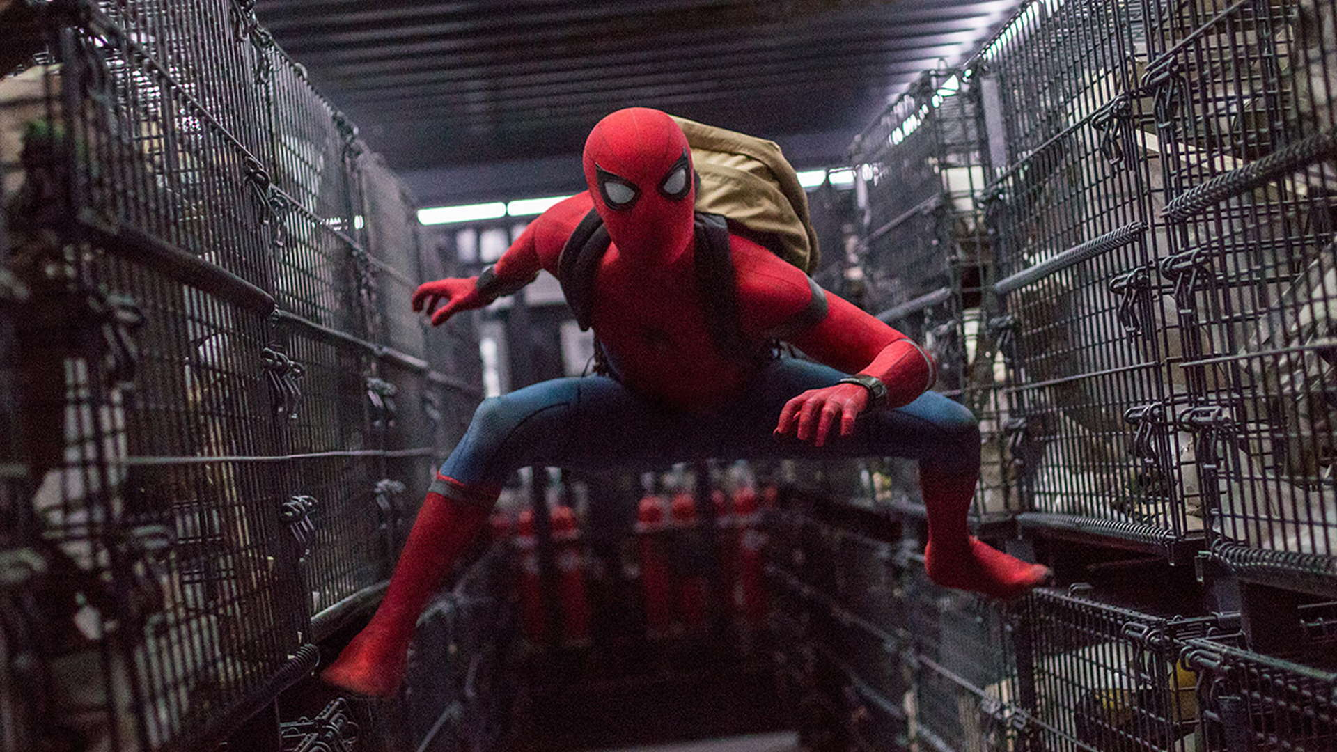 /special/spiderman_homecoming/