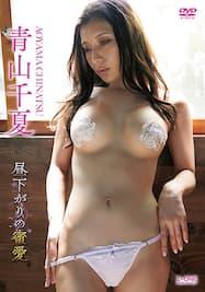 昼下がりの蜜愛/青山千夏