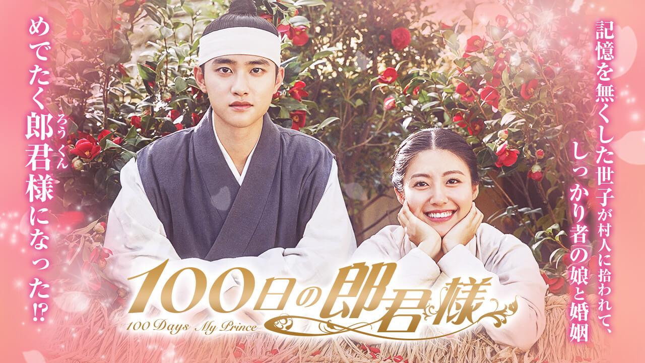 韓国ドラマ 100日の郎君様 キャスト