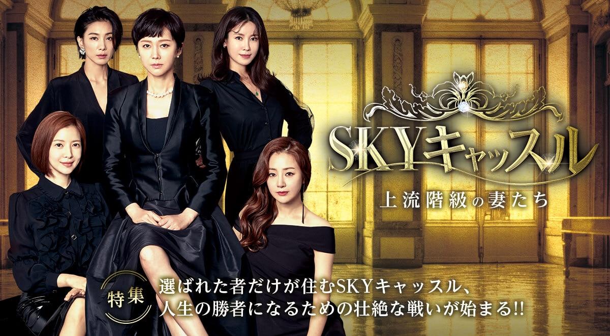 韓国 ドラマ sky キャッスル キャスト