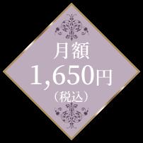 月額1,650円(税込)